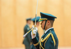 Guard of honor in Tokio. TOKYO, JAPAN - Apr 06, 2016: A guard of honor during a meeting of the President of Ukraine Petro Poroshenko and Prime Minister of Japan Stock Photos