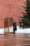 Guard of Honor at the tomb of the Unknown Soldier Stock Photos