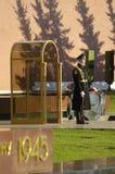 Guard of Honour royalty free stock photos