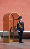 Guard of honour. MOSCOW - APRIL 23: The Guard of Honour at the tomb of the Unknown Soldier at the wall of Moscow Kremlin on April 23, 2012 in Moscow, Russia Royalty Free Stock Photos