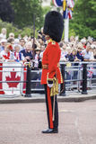 Guard in London Royalty Free Stock Photos