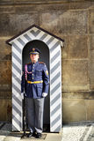 Guard at Prague Castle Royalty Free Stock Photography