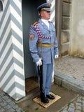 Guard, Prague Castle. Blue uniformed guard, with bolt action rifle and chromed bayonet, Prague Castle, Czech Republic stock photo