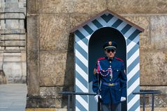 The guard at the Prague castle. Has the duty to protect the president of the Czech Republic Royalty Free Stock Photography