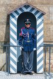 Guard at Prague castle. The guard at the Prague castle has the duty to protect the president of the Czech Republic Stock Images