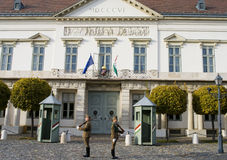 Guard at the Presidential palac in  budapest Royalty Free Stock Photo