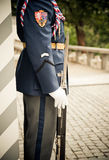 Guard with Rifle Royalty Free Stock Image