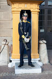 Guard at the Royal Palace of Stockholm Stock Photography