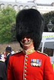 Guard at Royal Wedding 2011 Stock Photos