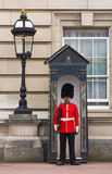 Guard on sentry duty outside Buckingham Palace. London stock photography