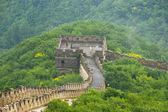 Guard tower. A photo taken of the great wall looking at a guard tower in the middle of the forest royalty free stock photo