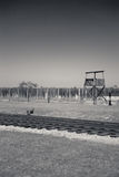 Guard tower, Birkenau Concentration Camp, Poland Stock Photography