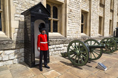 Guard at the Tower of London Royalty Free Stock Images