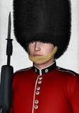 Guarda britânica real ilustração do vetor
