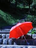 Guarda-chuva Fotografia de Stock Royalty Free