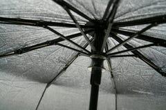 guarda-chuva Imagens de Stock