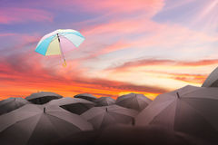 guarda-chuva abstrato que voa sobre muitos guarda-chuvas pretos com beautifu Fotografia de Stock