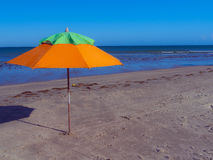 Guarda-chuva alaranjado Foto de Stock Royalty Free