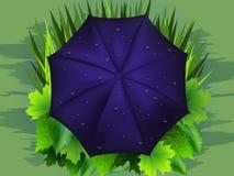Guarda-chuva azul e grama verde Fotos de Stock