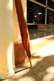 Guarda-chuva de Brown Fotografia de Stock Royalty Free