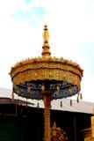 Guarda-chuva estratificado dourado Fotos de Stock Royalty Free