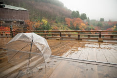 Guarda-chuva transparente no terraço de madeira molhado, Kiyomizu-dera, Japão Imagem de Stock Royalty Free