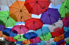 Guarda-chuvas coloridos diferentes Imagem de Stock Royalty Free