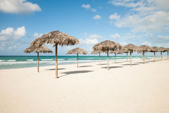 Guarda-chuvas das folhas de palmeira reais, parasole no Sandy Beach no Var Foto de Stock
