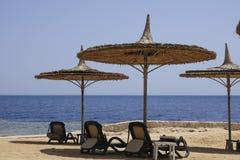 Guarda-chuvas de uma palha com deckchairs na praia do Mar Vermelho Imagem de Stock Royalty Free