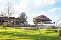 Guarda-chuvas decorativos feitos de ramos da palma Imagem de Stock