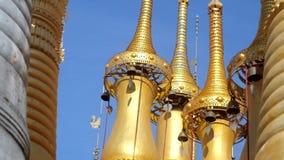 Guarda-chuvas dourados, Indein, lago Inle, Myanmar video estoque