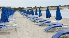 Guarda-chuvas e azul dos sunbeds na praia de Chipre na tarde foto de stock royalty free