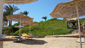 Guarda-chuvas na praia arredondada por verdes Imagem de Stock Royalty Free