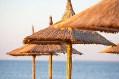 Guarda-chuvas Thatched na praia Fotografia de Stock