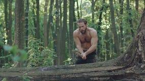 Guarda florestal forte que desbasta uma árvore com machado em uma floresta lentamente video estoque