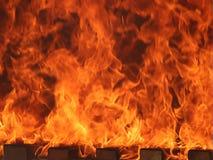 Guarda-fogo imagem de stock royalty free