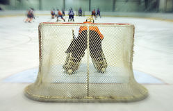 Guarda-redes do hóquei de gelo Imagem de Stock