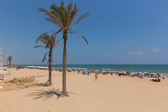 Free Guardamar Del Segura Spain Palm Trees On Sandy Beac Royalty Free Stock Photos - 153977928