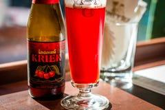 Guardanapo da cerveja do fruto e de vidro de cerveja e os de papel Imagem de Stock Royalty Free