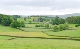 Guardando attraverso i campi verdi con gli alberi nell'agricoltura della Gran-Bretagna Fotografie Stock Libere da Diritti