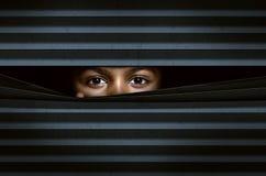Guardando attraverso i ciechi di finestra Immagine Stock