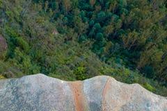 Guardando giù dalla scogliera della roccia dentro sugli alberi e sulle cime dell'albero immagini stock libere da diritti