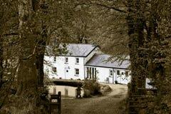 Guardando giù il tuffo ampio lungo ad una casa bianca magnifica con un grande stagno davanti  fotografie stock libere da diritti