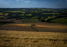Guardando giù sulla campagna del Wiltshire e di Dorset da Wingreen Immagine Stock Libera da Diritti