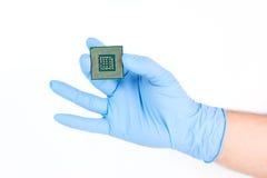 Guardando o processador poderoso pequeno do computador Fotografia de Stock Royalty Free