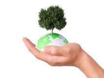 Guardando um globo e uma árvore da terra em sua mão Imagem de Stock Royalty Free