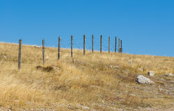 Guarded landscape - barrier with barbed wire Royalty Free Stock Photography