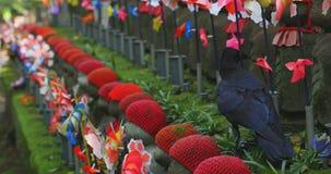 Guardião da estátua que veste o chapéu vermelho e o corvo preto no dia do Tóquio filme