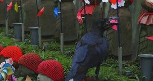Guardião da estátua que veste o chapéu vermelho e o corvo preto no dia do Tóquio video estoque