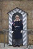 Guardia al castello di Praga, repubblica Ceca Fotografia Stock Libera da Diritti